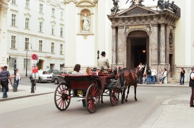 Horse drawn buggy, Vienna